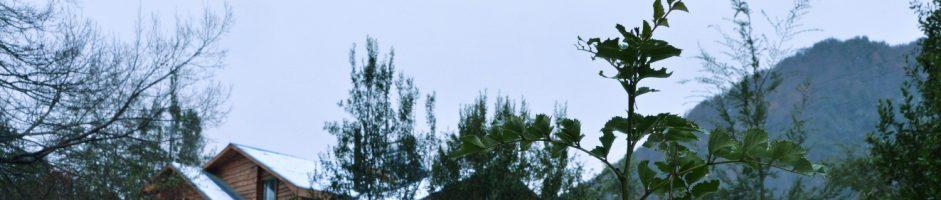 Arrendar cabaña Malalcahuello 2021