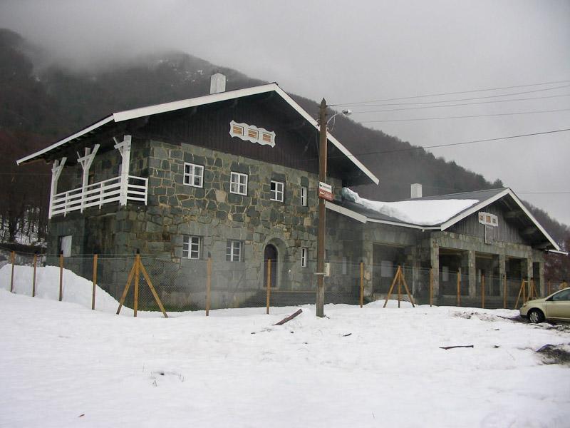 monumento nacional araucania